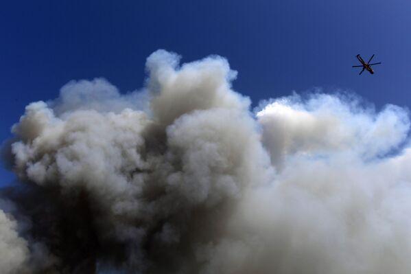 Máy bay trực thăng dập đám cháy rừng ở ngoại ô phía bắc Athens - Sputnik Việt Nam