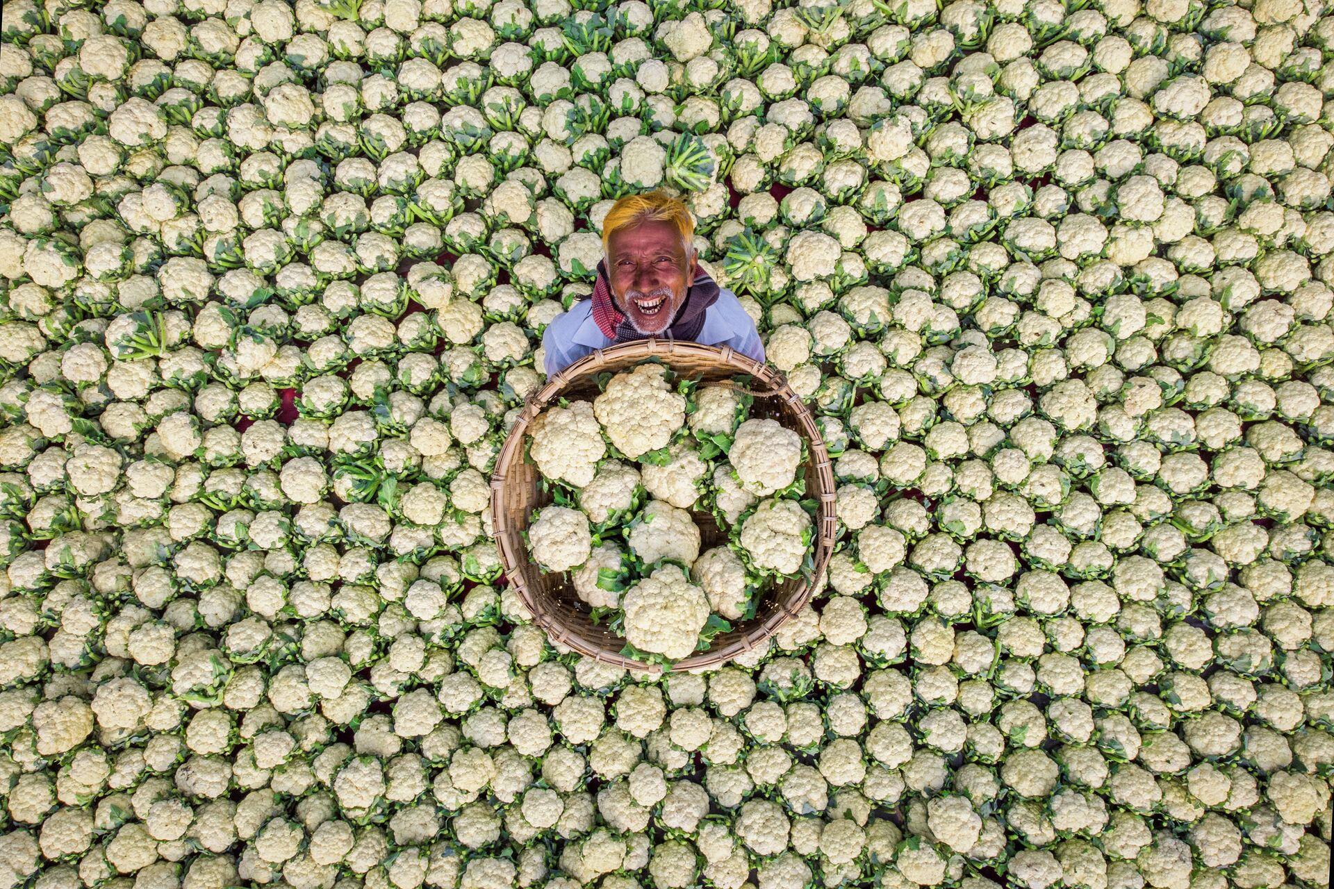 Bức ảnh của Rafid Yasar từ Bangladesh Happy Farmer, giành chiến thắng sau kết quả bỏ phiếu trực tuyến của Cuộc thi Báo ảnh quốc tế Stenin - Sputnik Việt Nam, 1920, 05.10.2021