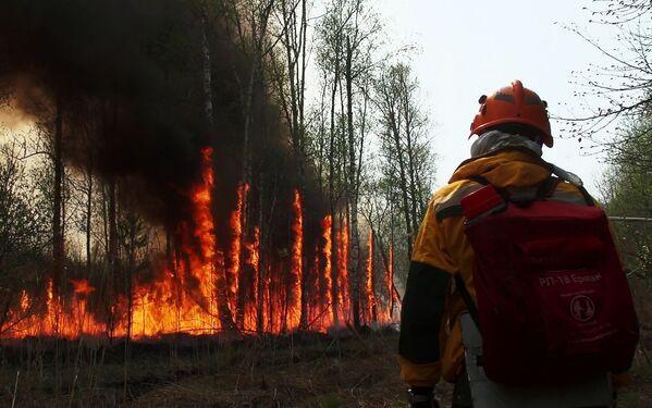 Dập đám cháy rừng ở Yakutia, Nga - Sputnik Việt Nam