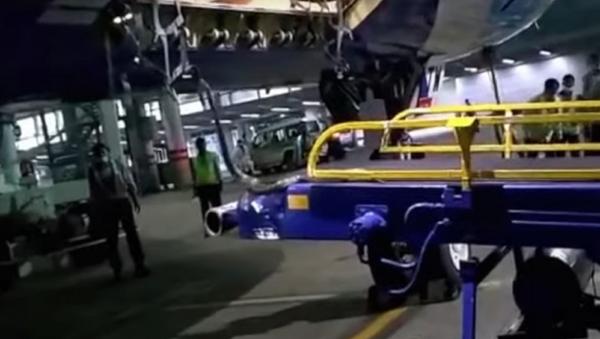 Du khách rắn hổ muốn bay tới Ấn Độ khiến nhân viên sân bay phát hoảng - Sputnik Việt Nam