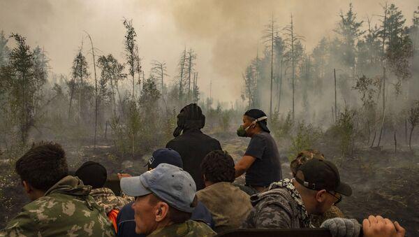 Cháy rừng ở Yakutia - Sputnik Việt Nam