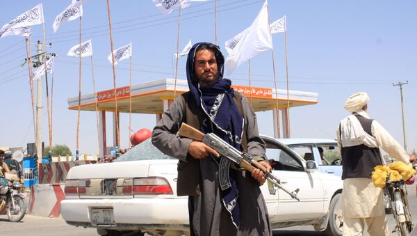 Một chiến binh Taliban đứng nhìn khi anh ta đứng tại thành phố Ghazni, Afghanistan ngày 14 tháng 8 năm 2021. - Sputnik Việt Nam