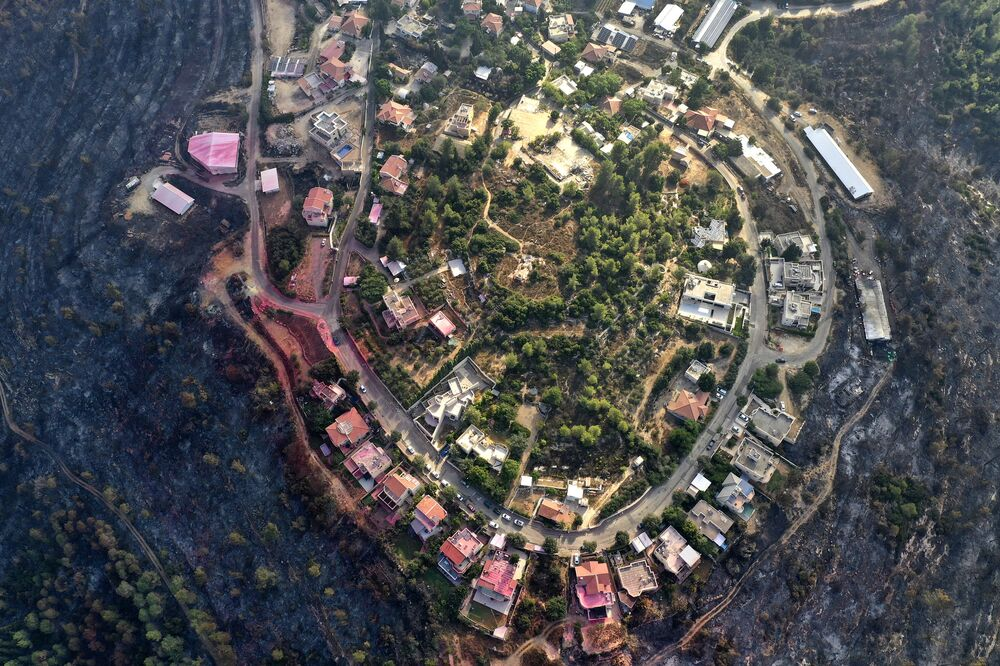 Những khu rừng cháy trụi quanh làng Givat-Yearim, Israel