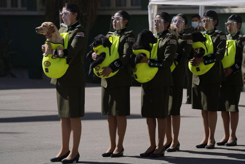Cảnh sát giới thiệu những chú chó nhỏ để huấn luyện trong buổi lễ tại Học viện Cảnh sát Quốc gia ở La Paz, Bolivia