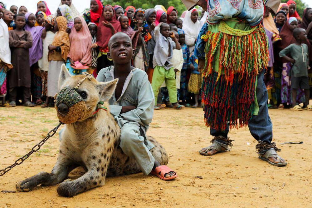 Chú bé cưỡi trên con linh cẩu ở bang Kano, miền bắc Nigeria