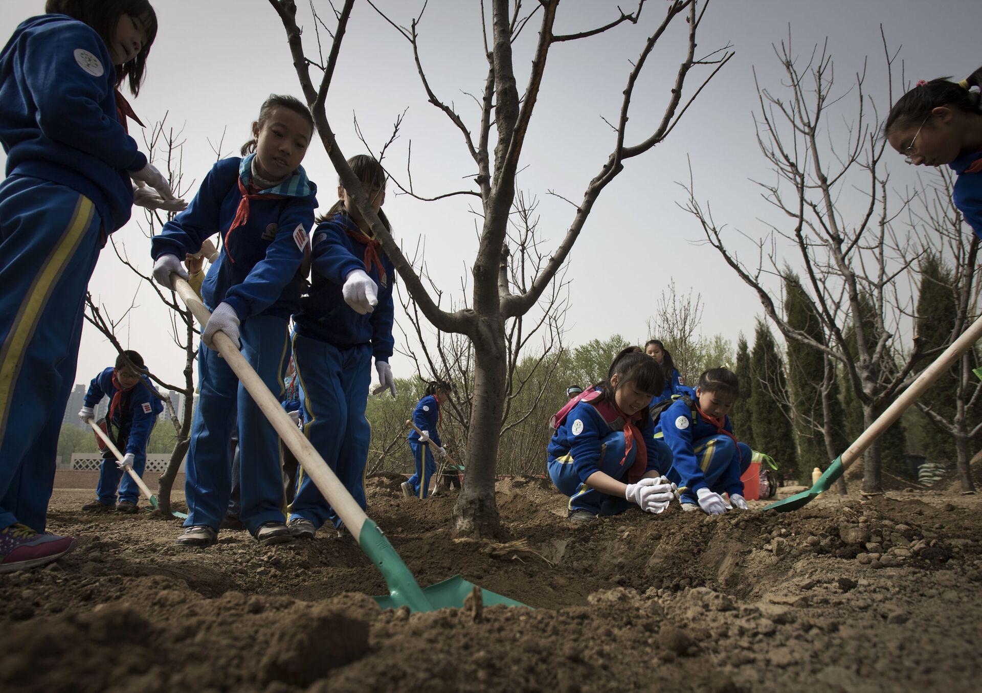 Học sinh Trung Quốc trồng cây trong công viên - Sputnik Việt Nam, 1920, 05.10.2021