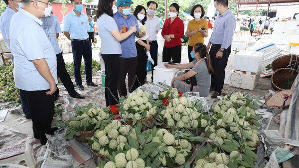 Hiện nay, na tiêu chuẩn VietGAP của Hợp tác xã nông sản huyện Chi Lăng đã bắt đầu cho thu hoạch nhưng việc tiêu thụ bị ảnh hưởng do dịch COVID-19. - Sputnik Việt Nam