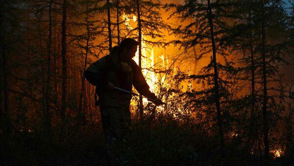 Dập lửa rừng ở Yakutia - Sputnik Việt Nam