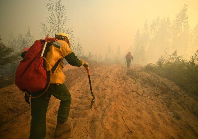 Nhân viên của FBU Avialesokhrana tại hiện trường dập lửa cháy rừng gần làng Sosnovy Bor ở Cộng hòa Mari El