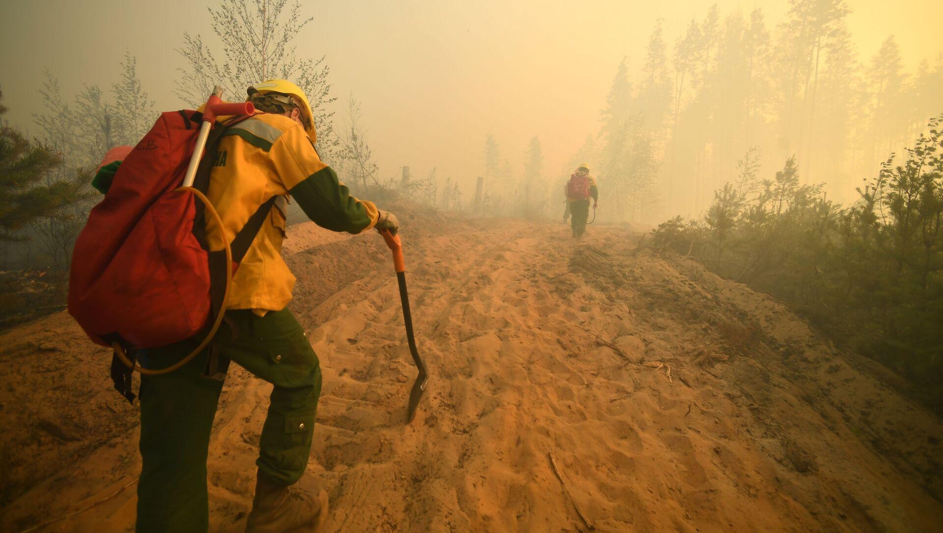 Nhân viên của FBU Avialesokhrana tại hiện trường dập lửa cháy rừng gần làng Sosnovy Bor ở Cộng hòa Mari El - Sputnik Việt Nam, 1920, 02.09.2021