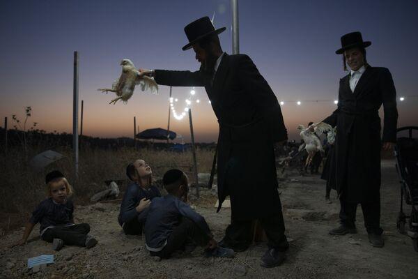Người Do Thái Chính thống giáo giữ con gà trên đầu các con của mình trong nghi lễ Kaparot ở Beit Shemesh, Israel - Sputnik Việt Nam