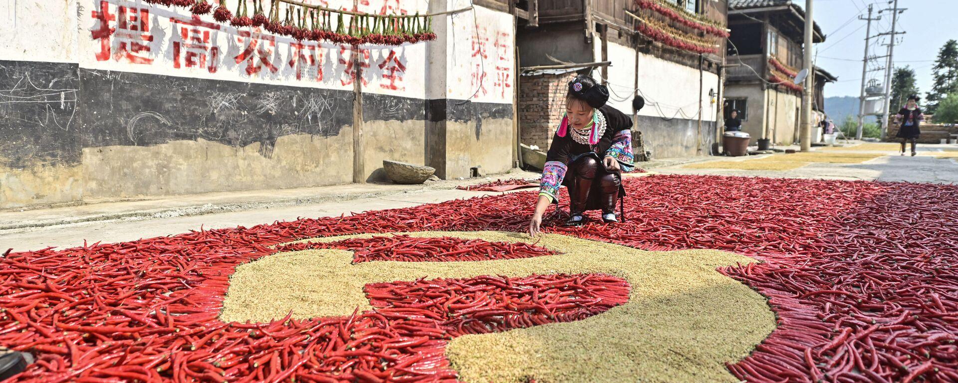 Cô gái làm lá cờ của Đảng Cộng sản Trung Quốc bằng ngô và ớt bột ở tỉnh Quý Châu, Tây Nam Trung Quốc. - Sputnik Việt Nam, 1920, 24.09.2021