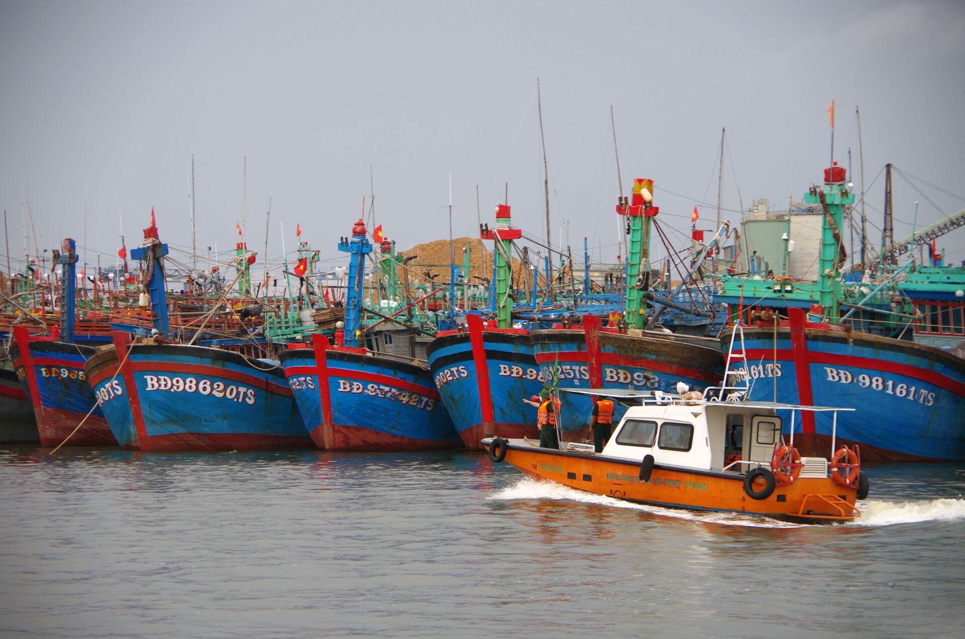 Bình Định: Khẩn trương kêu gọi tàu thuyền vào bờ trú tránh bão số 6 - Sputnik Việt Nam, 1920, 05.10.2021