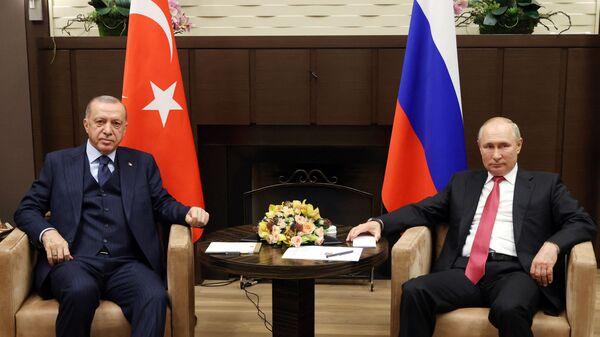 Tổng thống Nga Vladimir Putin tại cuộc gặp người đồng cấp Thổ Nhĩ Kỳ Tayyip Erdogan ở Sochi - Sputnik Việt Nam