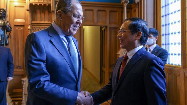 Bộ trưởng Ngoại giao Bùi Thanh Sơn hội đàm với Bộ trưởng Ngoại giao Nga Sergei Lavrov - Sputnik Việt Nam