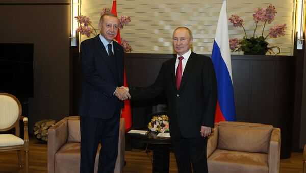 Cuộc hội đàm giữa Tổng thống Nga Vladimir Putin và Tổng thống Thổ Nhĩ Kỳ Recep Tayyip Erdogan - Sputnik Việt Nam