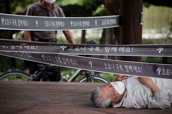 Người đàn ông nghỉ ngơi thư giãn trong công viên ở Seoul, Hàn Quốc - Sputnik Việt Nam