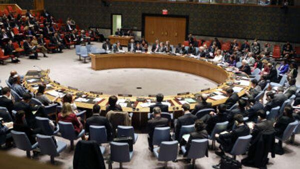 Hội đồng Bảo an Liên Hợp Quốc - Sputnik Việt Nam