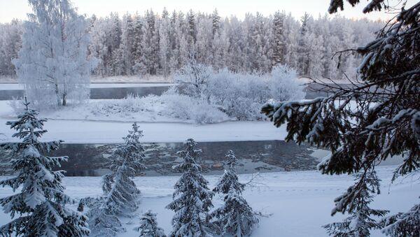 Sông Shuya ở Karelia vào mùa đông - Sputnik Việt Nam