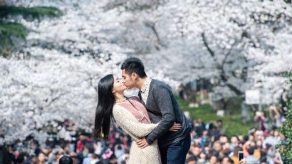 Một đôi vợ chồng trên nền hoa anh đào nở ở Trung Quốc - Sputnik Việt Nam