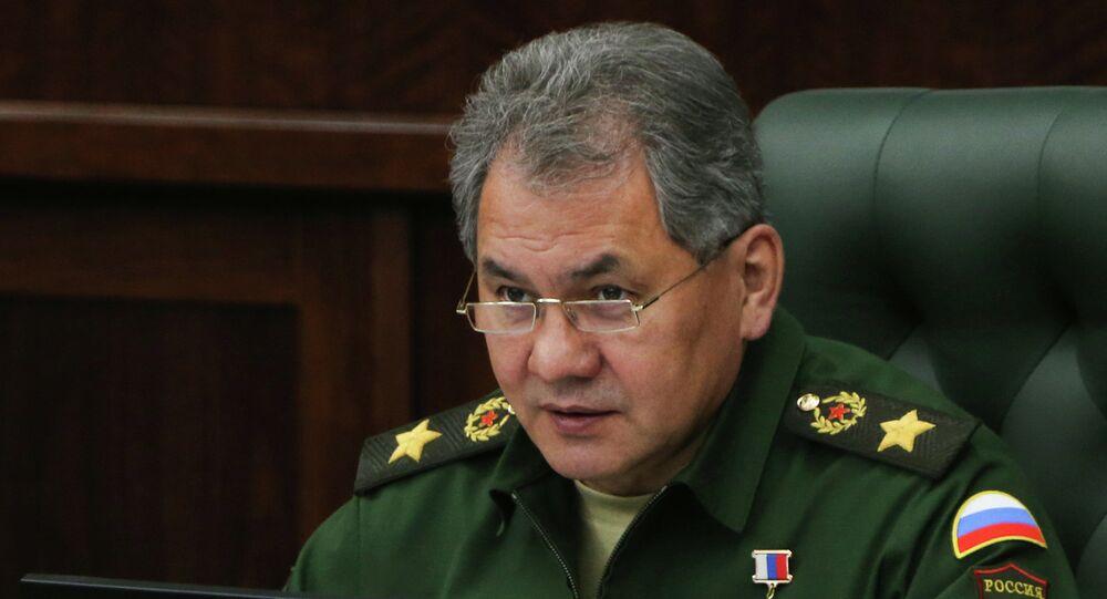 Tướng Sergei Shoigu, Bộ trưởng Quốc phòng Nga