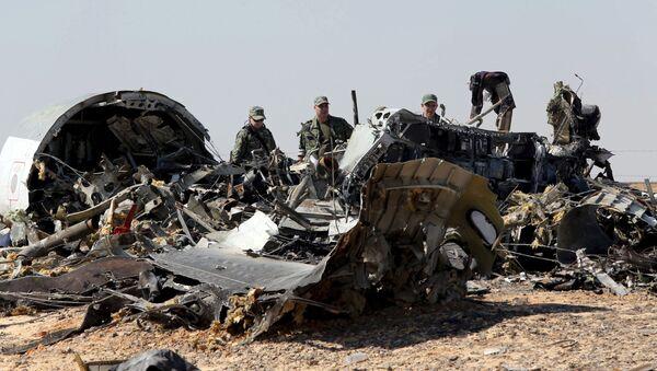 Tai nạn máy bay A321 - Sputnik Việt Nam