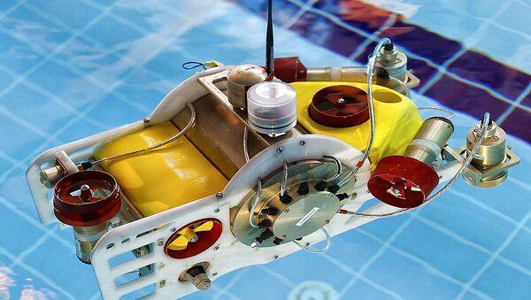 Các sinh viên Nga tham gia Giải vô địch châu Á về kỹ thuật robot - Sputnik Việt Nam