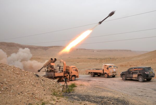 Binh sĩ  Syria và dân quân trong khu vực Palmyra - Sputnik Việt Nam