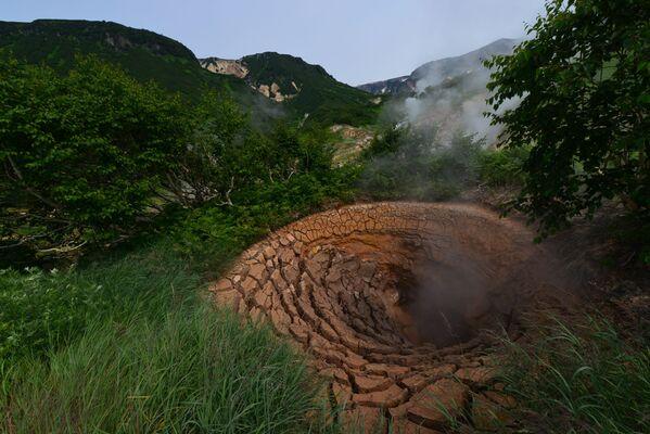 Suối bùn Grozny trong Thung lũng Geysers tại Khu bảo tồn Kronotsky ở Kamchatka - Sputnik Việt Nam