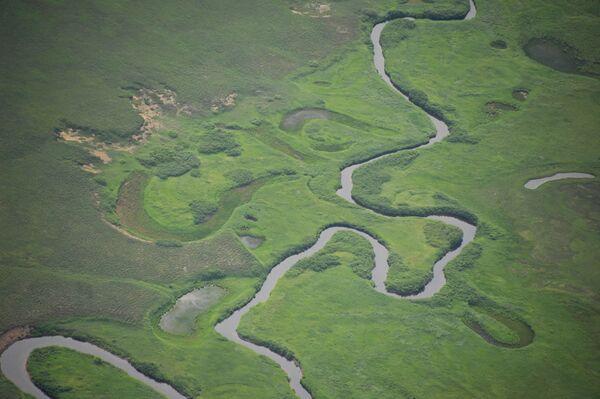 Phong cảnh một trong những con sông trong Khu bảo tồn Kronotsky ở Kamchatka - Sputnik Việt Nam