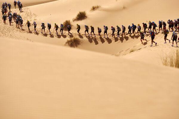 Các thành viên tham gia cuộc chạy đua marathon theo vùng sa mạc Sahara thuộc Marocco - Sputnik Việt Nam