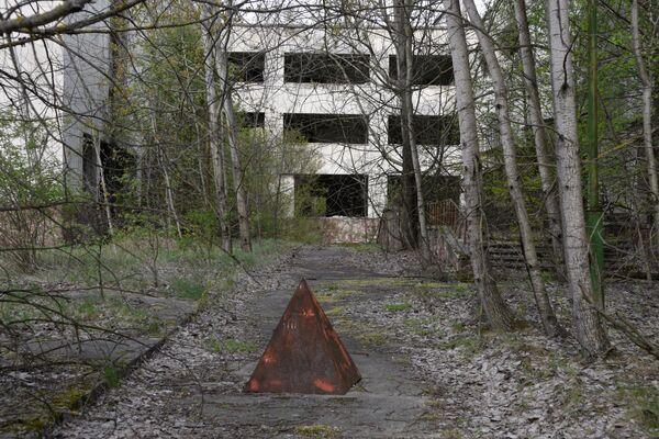 Trong khu vực bỏ hoang sau vụ tai nạn nhà máy điện hạt nhân Chernobyl - Sputnik Việt Nam