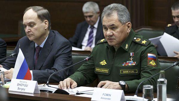 Bộ trưởng Quốc phòng Nga Sergei Shoigu tại cuộc gặp Bộ trướng quốc phòng Việt Nam Ngô Xuân Lịch. - Sputnik Việt Nam