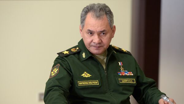 Bộ trưởng Quốc phòng Nga Tướng Sergei Shoigu - Sputnik Việt Nam