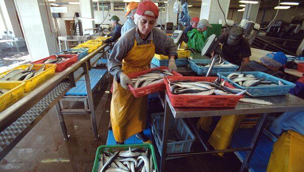 nhà máy cá hộp trên đảo Shikotan - Sputnik Việt Nam