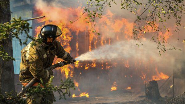 Rừng cháy tại Khu vực Amur - Sputnik Việt Nam