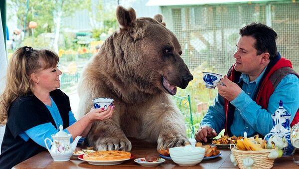 Cặp vợ chồng Panteleenko và con gấu Styopa - Sputnik Việt Nam