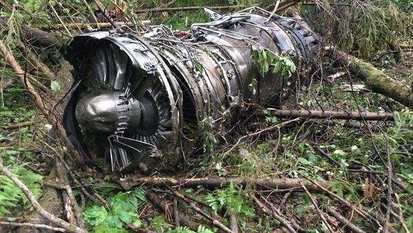 Động cơ của máy bay Su-27 - Sputnik Việt Nam