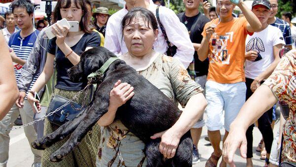 Trung Quốc: Nộp tiền chuộc để cứu chó khỏi bị ăn thịt trong lễ hội - Sputnik Việt Nam