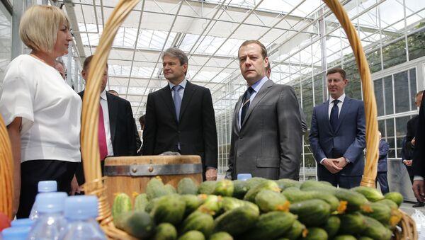Thủ tướng Nga Dmitry Medvedev tại ngoại thành Matxcơva - Sputnik Việt Nam