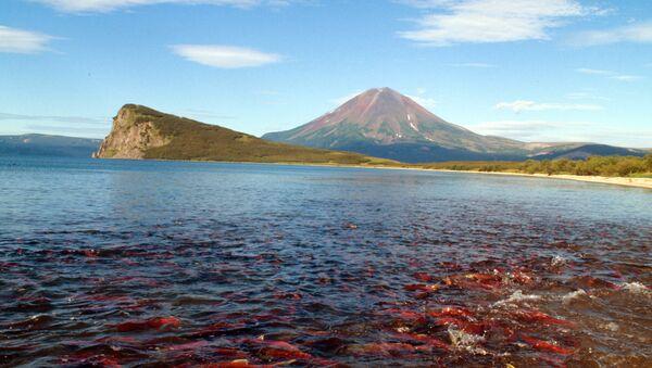 Hồ Kuril ở Kamchatka - Sputnik Việt Nam