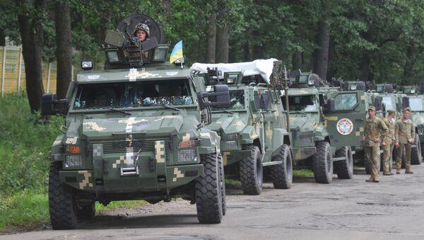 Cuộc tập trận NATO-Ukraina Rapid trident-2016 - Sputnik Việt Nam