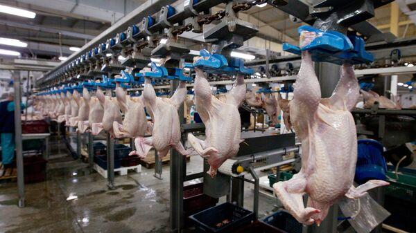sản xuất thịt ở Tomsk - Sputnik Việt Nam