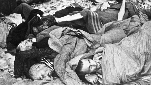 Các tù nhân đã bị tra tấn trong trại tập trung Auschwitz - Sputnik Việt Nam