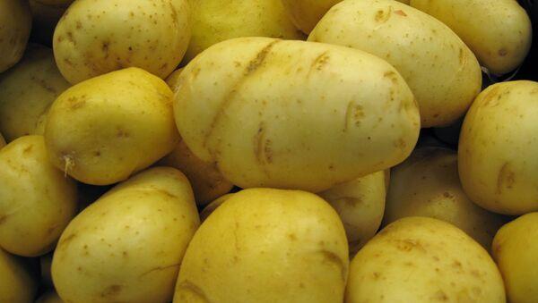 khoai tây - Sputnik Việt Nam