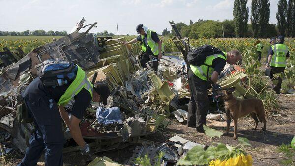 Chuyên gia Hà Lan, Australia và Malaysia điều tra vụ tai nạn của chuyến bay MH17 ở Ukraina - Sputnik Việt Nam
