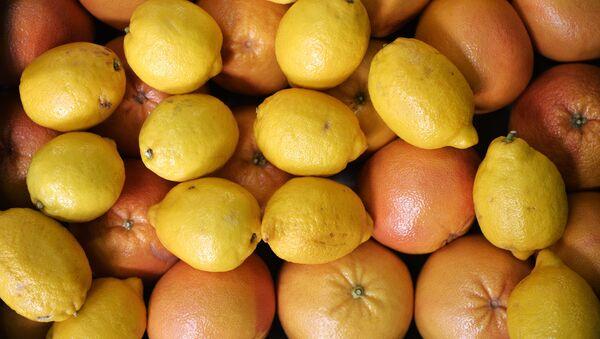 Syria bắt đầu xuất khẩu cam chanh vụ thu hoặc năm nay sang Nga - Sputnik Việt Nam