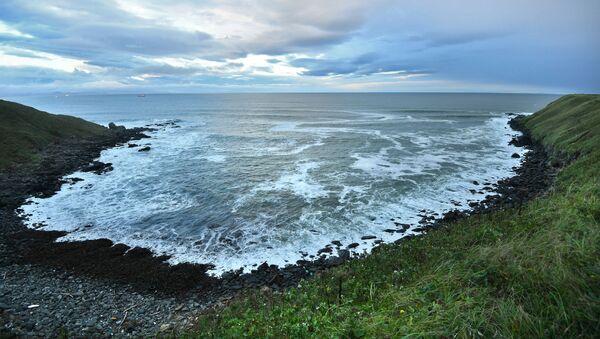 Берег Тихого океана в окрестностях поселка Южно-Курильск на острове Кунашир Большой Курильской гряды - Sputnik Việt Nam