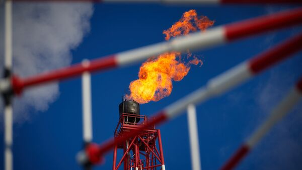 A view of the gas torch. (File) - Sputnik Việt Nam