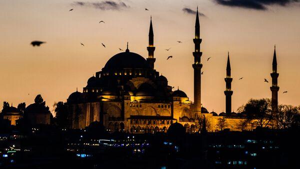 Вид на вечерний Стамбул - Sputnik Việt Nam